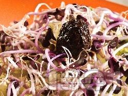 Салата от тиквички, зеле, кълнове и ряпа - снимка на рецептата